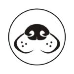 atelier recherche utilitaire pistage
