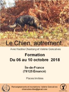 Affiche Le Chien autrement octobre 2018