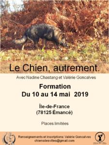 affiche Le Chien autrement mai 2019